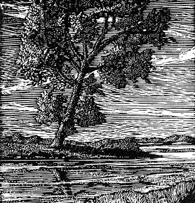 Tree--Psalm-1,-a-wood-engraving-from-Book-One-of-the-Book-of-Praises